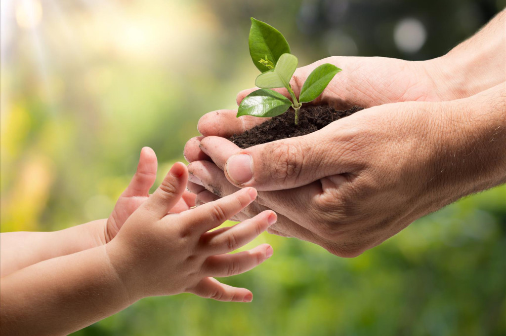 teaching-children-environment